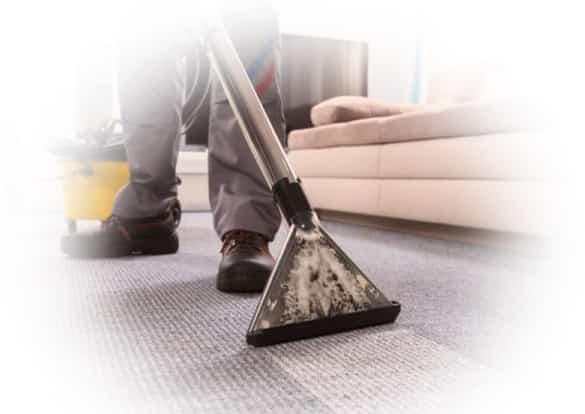 Best Carpet Cleaning Yeronga